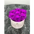 7- lillaka roosiga karp