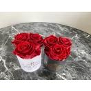3-punase roosiga madal karp