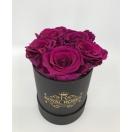 5- lilla roosiga karp