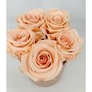 5- porcelain pink (nude)  roosiga karp