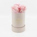 3-roosiga kõrge  karp