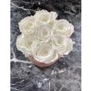 7-helendava  roosiga karp