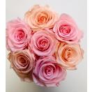 7-roosiga karp MIX