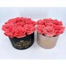 UUS! 7- CORAL pink roosiga karp