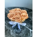 7- caramel roosi hõbedases keraamilises vaasis
