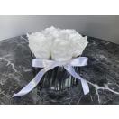 7- valget roosi hõbedases keraamilises vaasis