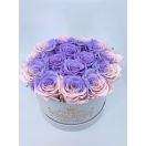 15-ombre roosiga karp (nude+violet)