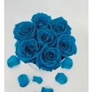 7- sinise roosiga karp