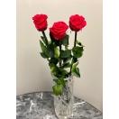 Punased varrega roosid 50cm