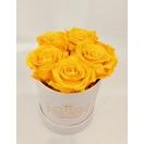 5- kollase roosiga karp