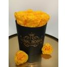 7-kollase roosiga