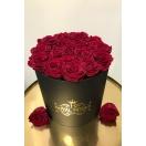 17-roosiga karp