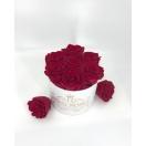 7- Cherry roosiga  karp