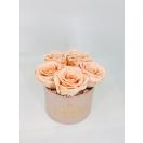 5- porcelain pink (nude)  roosiga MADAL karp
