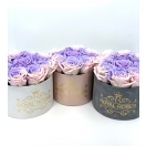 7-ombre roosiga karp (nude+violet)