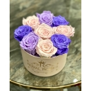 9-roosiga violetne mix roosaga valges karbis