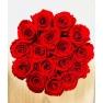 punased roosid.jpg